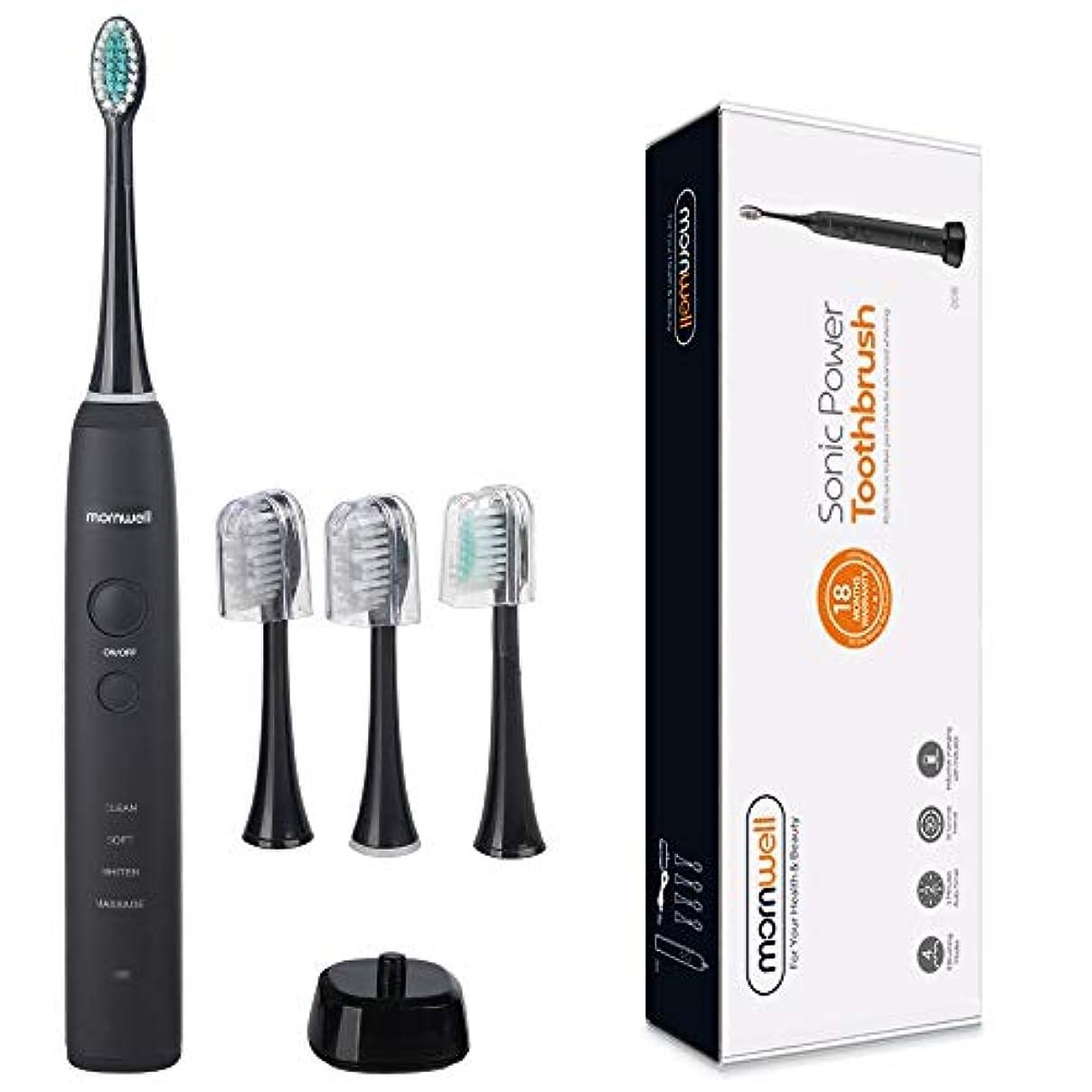 ペインギリック害発明YPZHEN IPX7は再充電可能な大人の音波パルス電動歯ブラシ、米国のプラグを防水します (色 : Black)