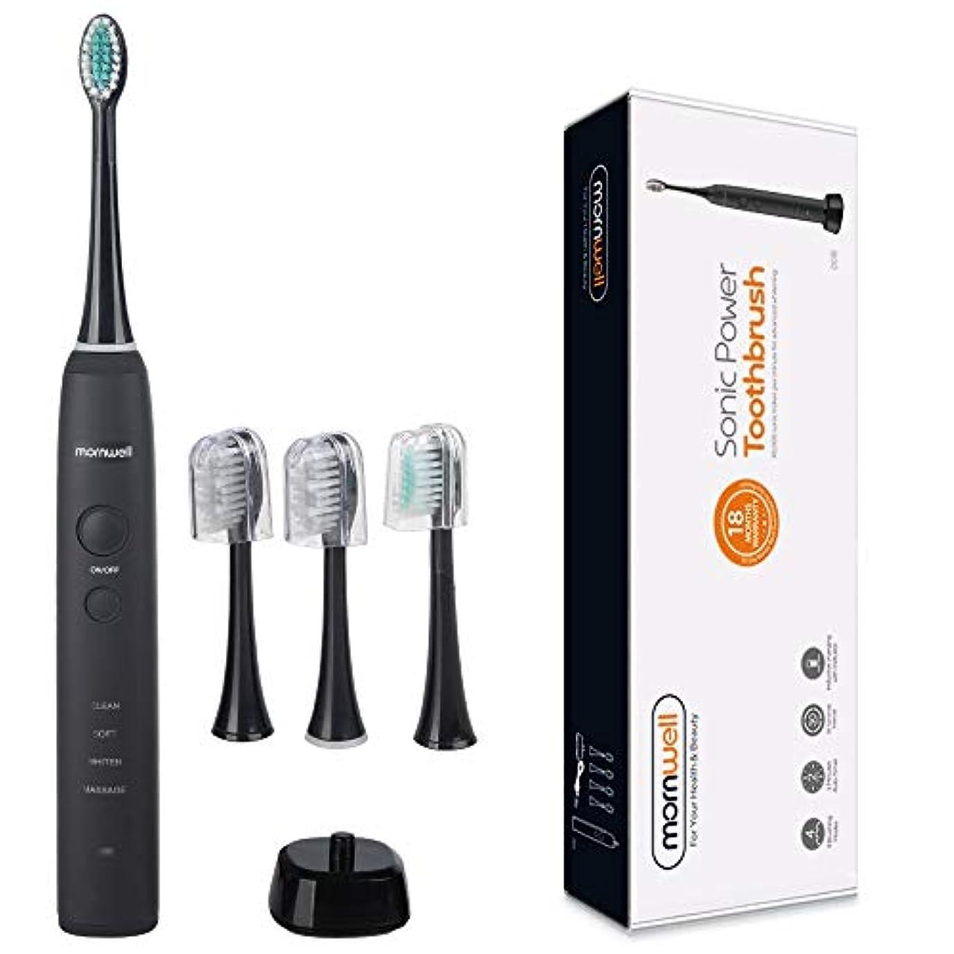 サンプルしつけかりてYPZHEN IPX7は再充電可能な大人の音波パルス電動歯ブラシ、米国のプラグを防水します (色 : Black)