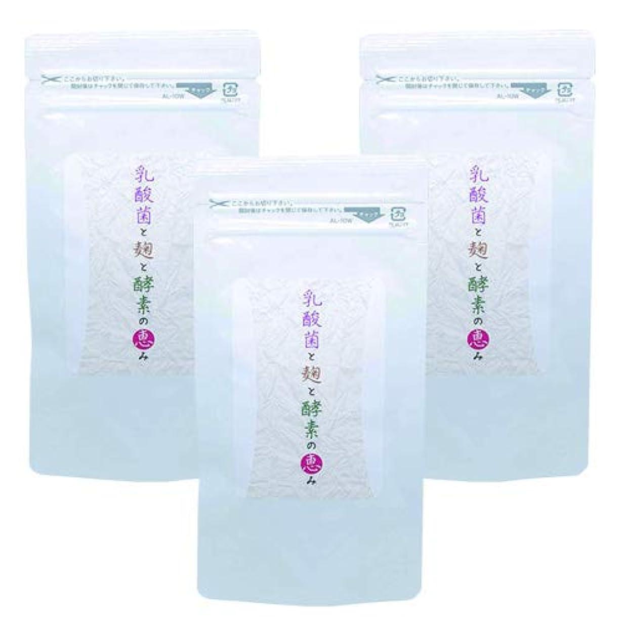 ほのめかす許す商業の乳酸菌と麹と酵素の恵み (3)