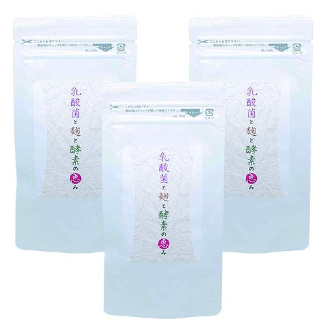 忠実なマットレス失乳酸菌と麹と酵素の恵み (3)