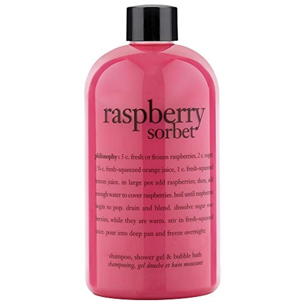燃やすレンチ士気哲学ラズベリーシャワージェル480ミリリットル (Philosophy) (x2) - Philosophy Raspberry Shower Gel 480ml (Pack of 2) [並行輸入品]