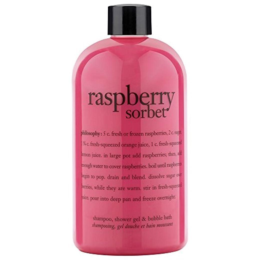 ペフ特徴づけるマーキー哲学ラズベリーシャワージェル480ミリリットル (Philosophy) (x6) - Philosophy Raspberry Shower Gel 480ml (Pack of 6) [並行輸入品]