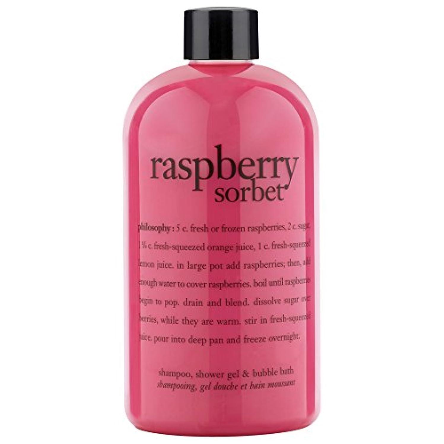 疫病シットコムピンク哲学ラズベリーシャワージェル480ミリリットル (Philosophy) (x2) - Philosophy Raspberry Shower Gel 480ml (Pack of 2) [並行輸入品]