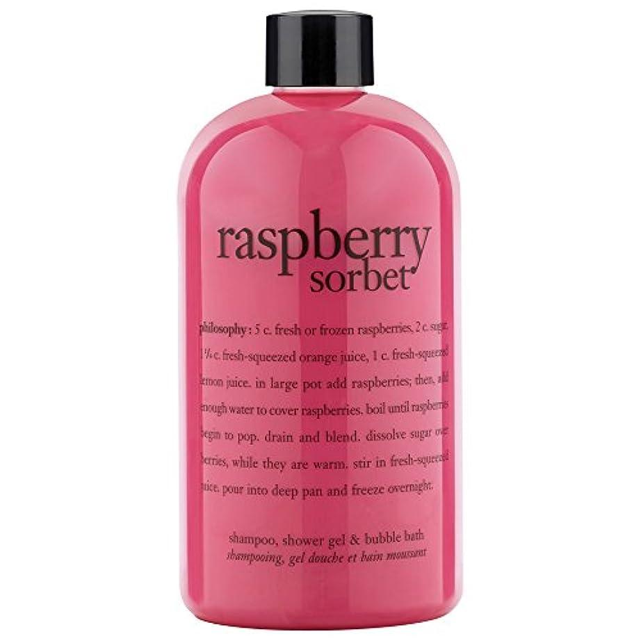 可能贈り物ソブリケット哲学ラズベリーシャワージェル480ミリリットル (Philosophy) (x2) - Philosophy Raspberry Shower Gel 480ml (Pack of 2) [並行輸入品]