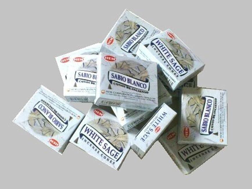 学習者実業家温かいHEM(ヘム)お香コーン ホワイトセージ 1ケース(10粒入り1箱×12箱)