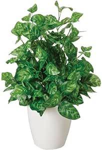 光の楽園 インテリアグリーン 人工観葉植物 光触媒 ピーコック