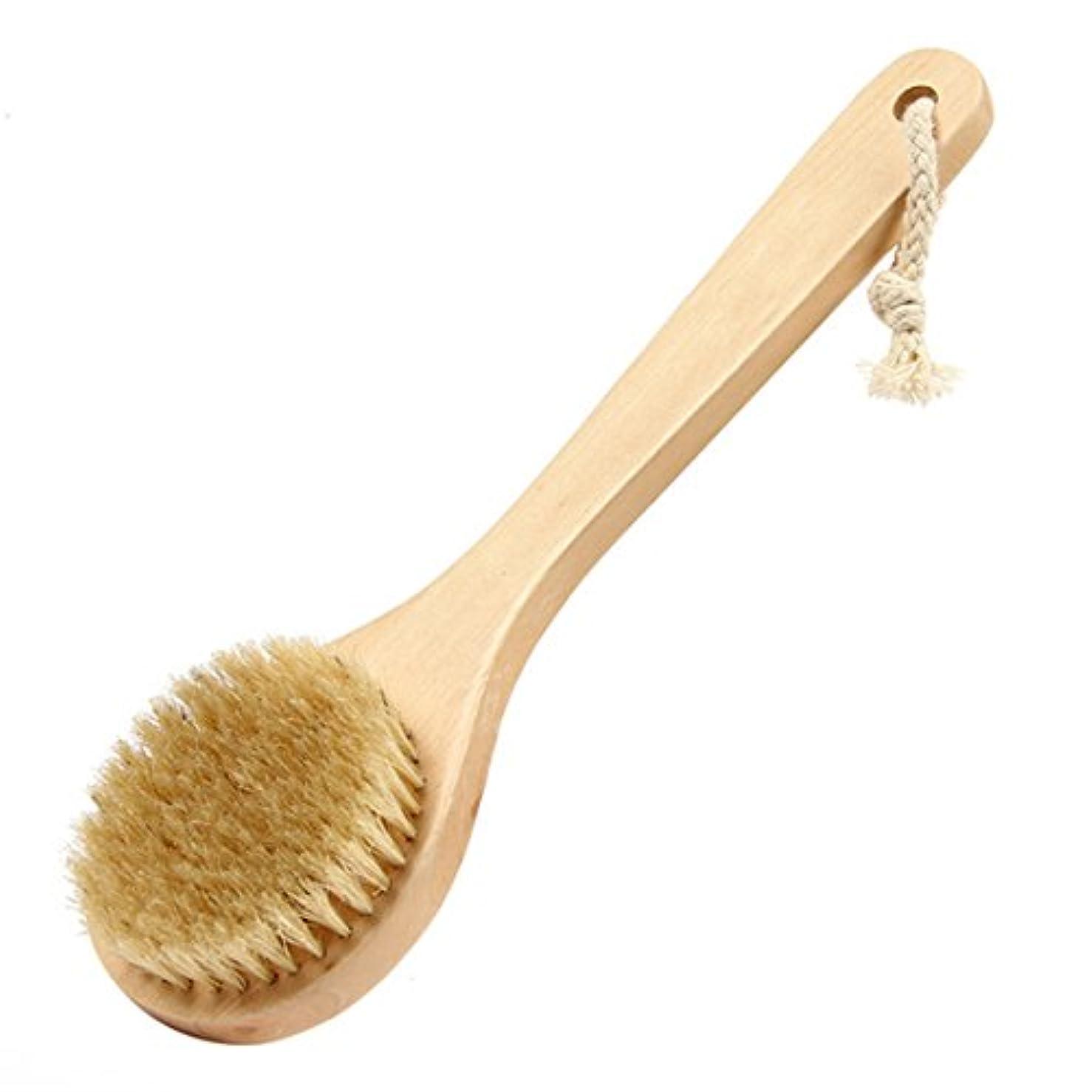 木製 バスブラシ 長柄 リーチ バックボディー 背部 シャワー ブリストル マッサージ 剛毛 SPAスクラバー ボディブラシ