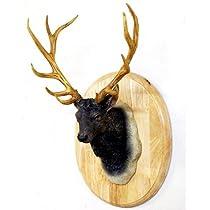 壁掛け オブジェ しか 鹿