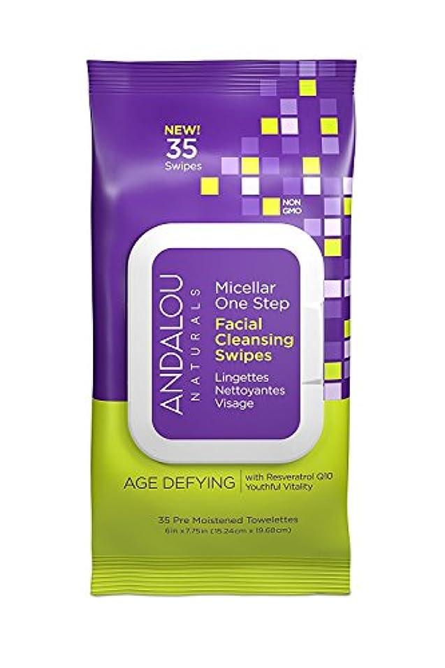 ソフトウェアコンパクトマスクオーガニック ボタニカル クレンジングシート 洗顔シート ナチュラル フルーツ幹細胞 「 Aミセラスワイプ 35枚入り 」 ANDALOU naturals アンダルー ナチュラルズ