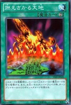 遊戯王カード 燃えさかる大地/決闘王の記憶 決闘者の王国編(15AY)