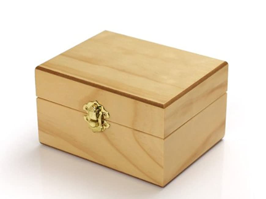 襟熟達した賞賛するエッセンシャルオイル収納ボックス 12本用