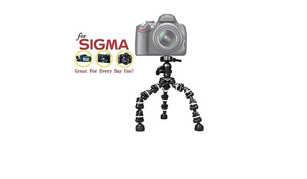 dp1 quattro 3in1 cargador para Sigma dp0 quattro dp2 Quattro