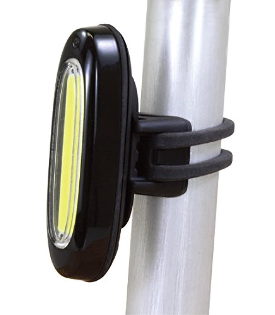 落ち着いたランタン再生SERFAS(サーファス) 自転車 LED ライト クエーサー USB充電 シリコンストラップ