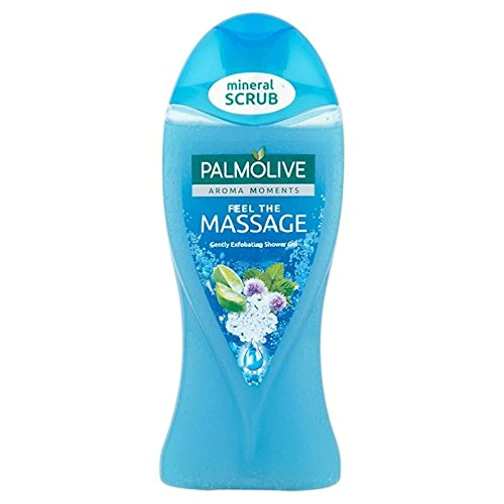 何もない眉をひそめる牛パルモシャワージェルマッサージ250ミリリットル x2 - Palmolive Shower Gel Massage 250ml (Pack of 2) [並行輸入品]