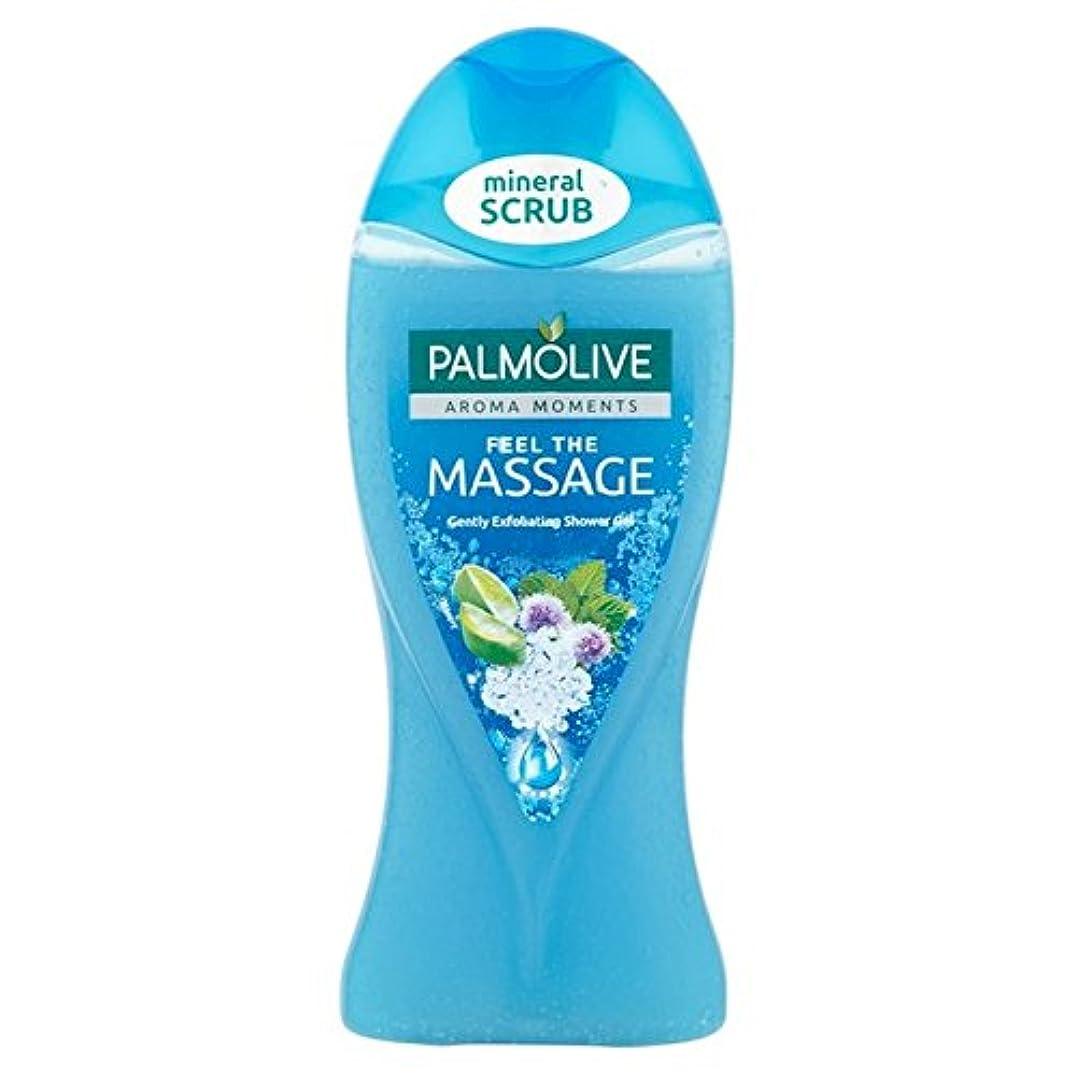 インドずんぐりした強化パルモシャワージェルマッサージ250ミリリットル x4 - Palmolive Shower Gel Massage 250ml (Pack of 4) [並行輸入品]