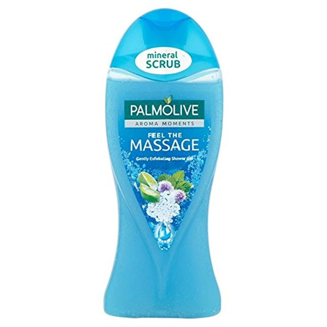 会う近傍反対パルモシャワージェルマッサージ250ミリリットル x4 - Palmolive Shower Gel Massage 250ml (Pack of 4) [並行輸入品]
