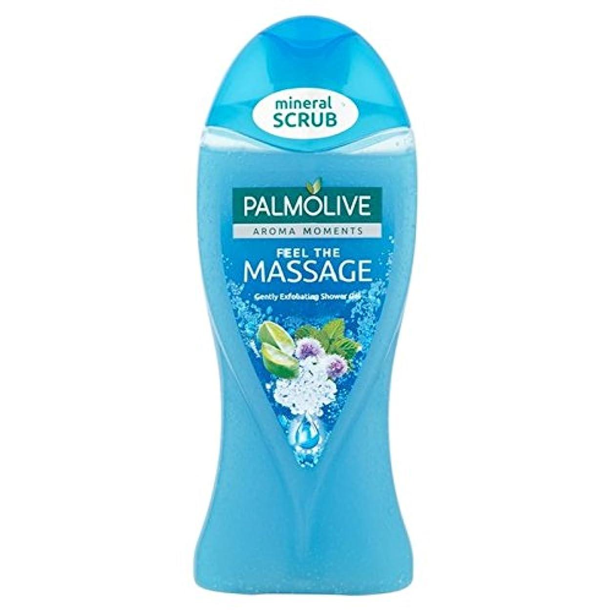 改善ダンプ一緒にパルモシャワージェルマッサージ250ミリリットル x4 - Palmolive Shower Gel Massage 250ml (Pack of 4) [並行輸入品]