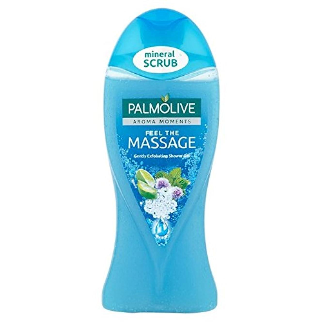 まさに余剰プランテーションパルモシャワージェルマッサージ250ミリリットル x4 - Palmolive Shower Gel Massage 250ml (Pack of 4) [並行輸入品]
