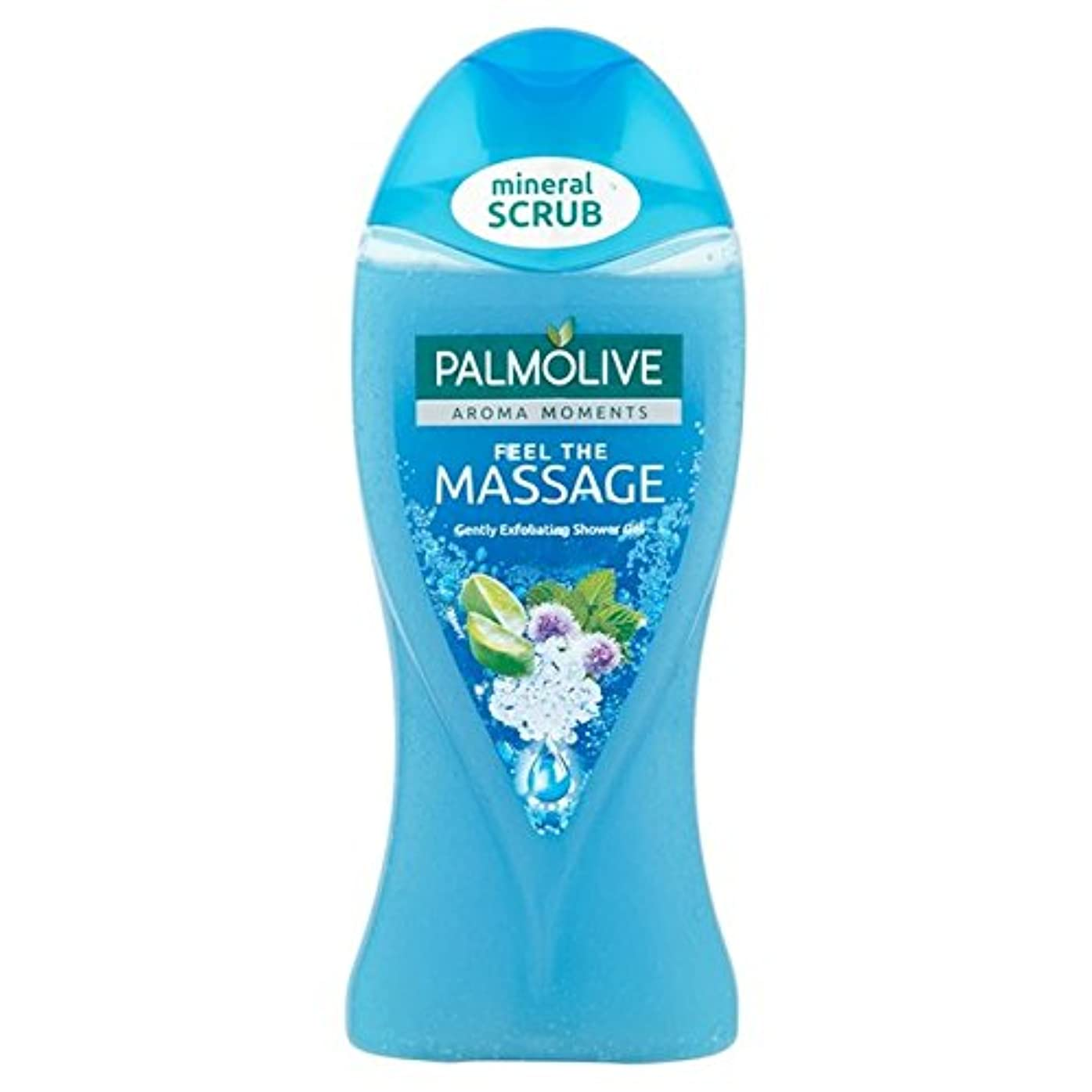 パーティション推定する歌パルモシャワージェルマッサージ250ミリリットル x4 - Palmolive Shower Gel Massage 250ml (Pack of 4) [並行輸入品]