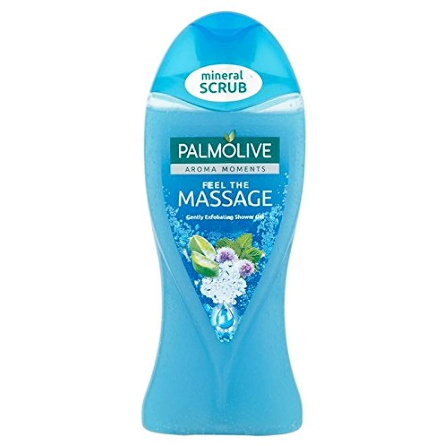 満州葉っぱ不実パルモシャワージェルマッサージ250ミリリットル x4 - Palmolive Shower Gel Massage 250ml (Pack of 4) [並行輸入品]