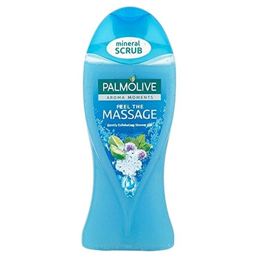いらいらさせる神秘的な文明化するパルモシャワージェルマッサージ250ミリリットル x4 - Palmolive Shower Gel Massage 250ml (Pack of 4) [並行輸入品]