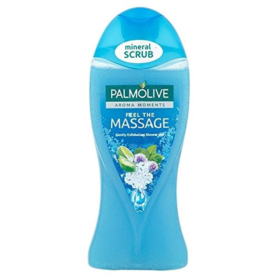 司書退屈赤パルモシャワージェルマッサージ250ミリリットル x4 - Palmolive Shower Gel Massage 250ml (Pack of 4) [並行輸入品]