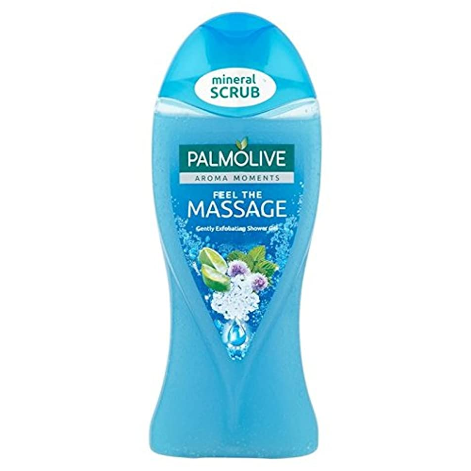 暖かくあからさま代表団パルモシャワージェルマッサージ250ミリリットル x2 - Palmolive Shower Gel Massage 250ml (Pack of 2) [並行輸入品]