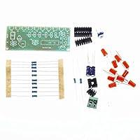Fityle 高品質 水 電子 NE555+CD4017 10 CH LED  回路基板 ライト  スイート DIY キット 耐久性