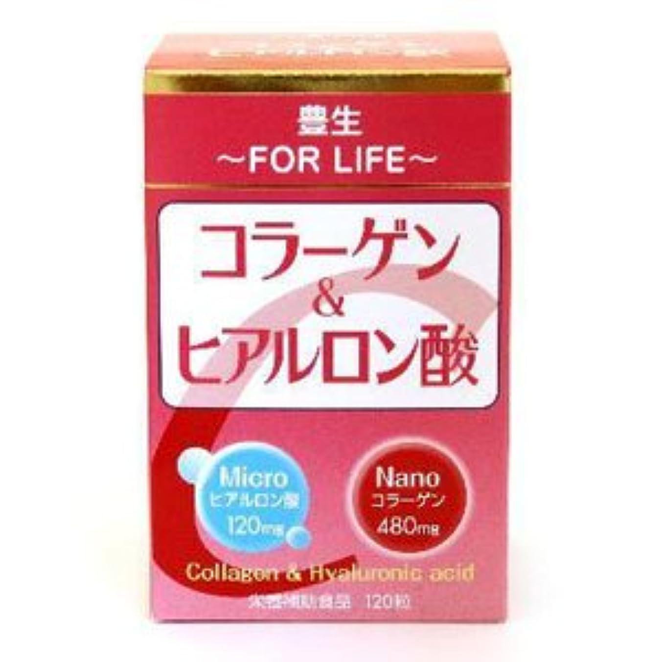 ライン講堂ペック【丸藤】豊生 コラーゲン&ヒアルロン酸 120粒