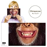 Animal Mask Book Cover アニマルマスクブックカバー [ Chimpanzee ]VRT42104