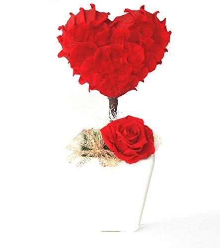 KOBE Flower smith ReiRi プリザーブドフラワー ハート・トピアリー デラックス版 レッド 送料無料【日時指定便対応】