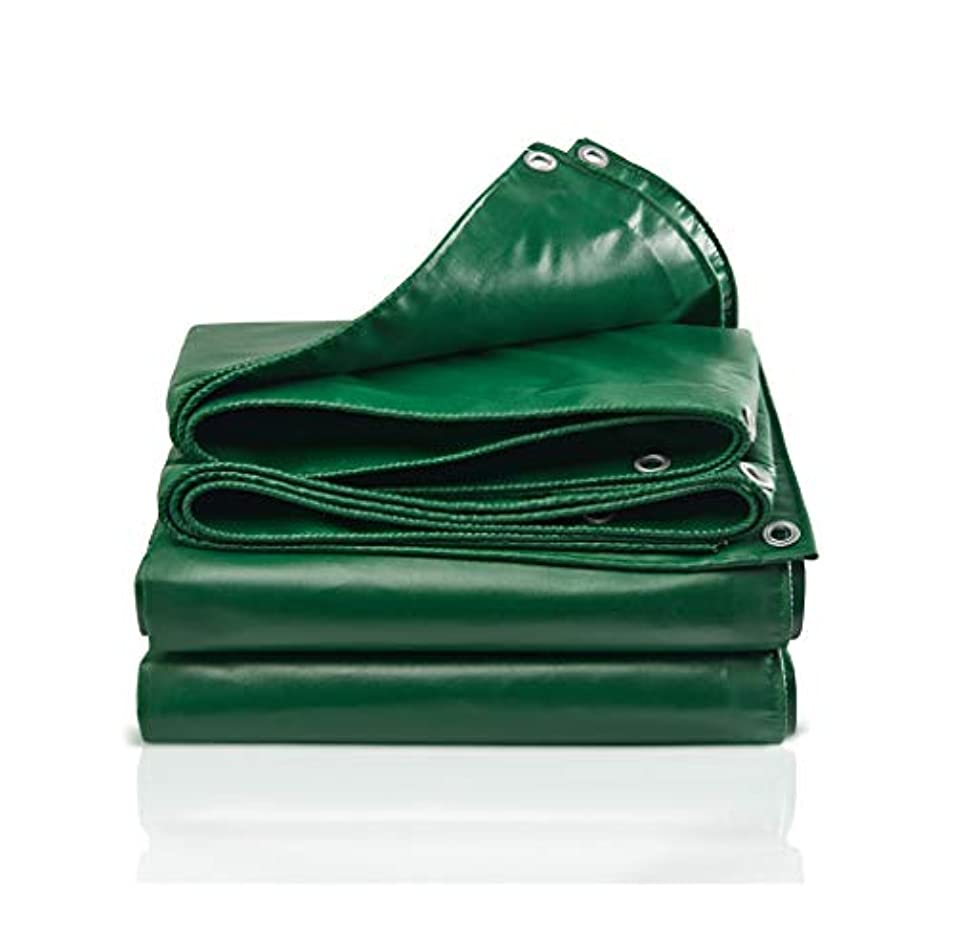 メッセンジャーシーフード消えるTarpaulin 防水クロス防水防水シート、防水日除け防水シート、アンチエイジング屋外サンシェード防水シート Garden tent (Size : 5*6m)