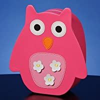 Jing-A-Ling Owl Bank by The San Francisco Music Box Company [並行輸入品]