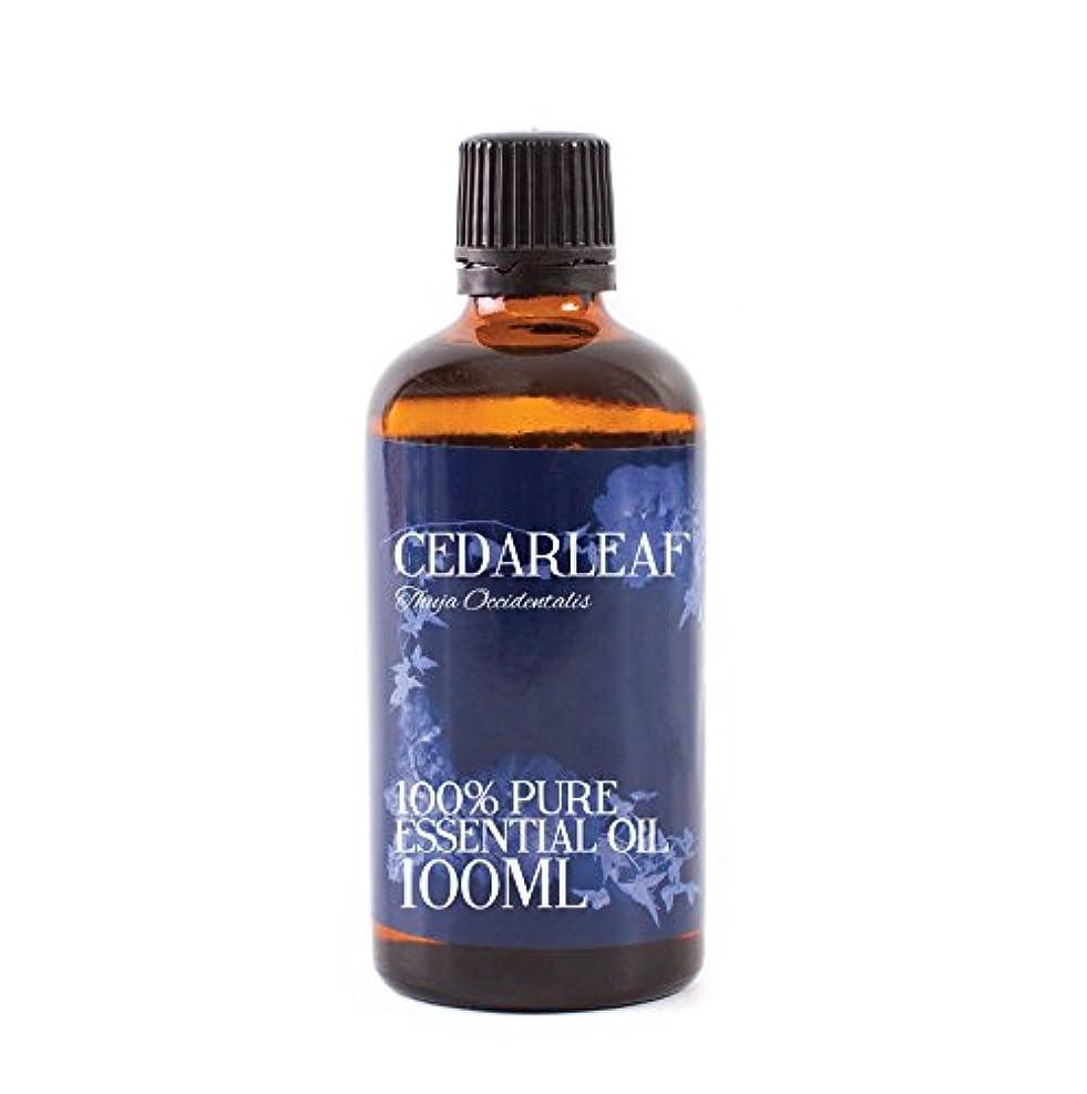 勤勉な優しさプロテスタントMystic Moments | Cedarleaf Essential Oil - 100ml - 100% Pure
