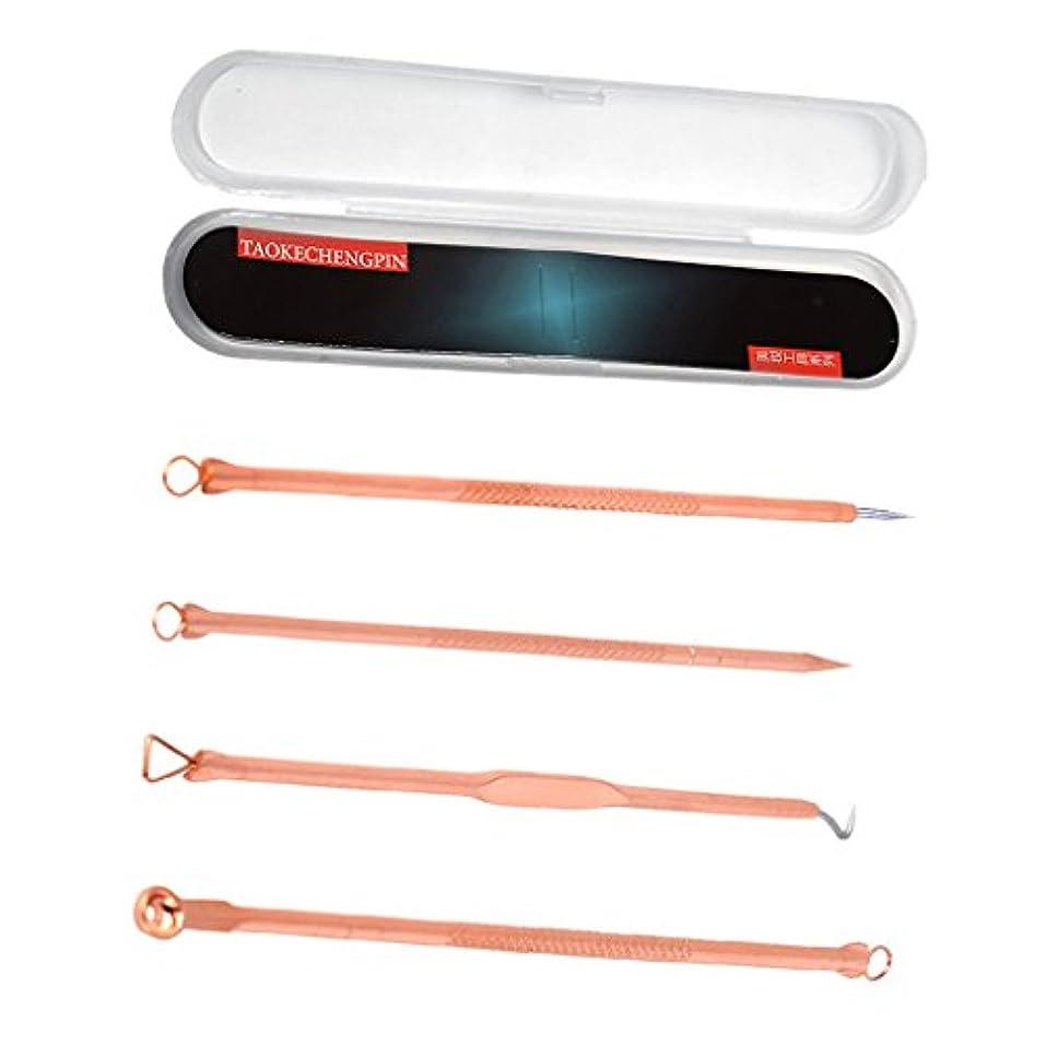 反論批評滑るToygogo 4ピース/個/セットステンレス鋼のにきびにきび傷の治療にきび抽出リムーバー針キット