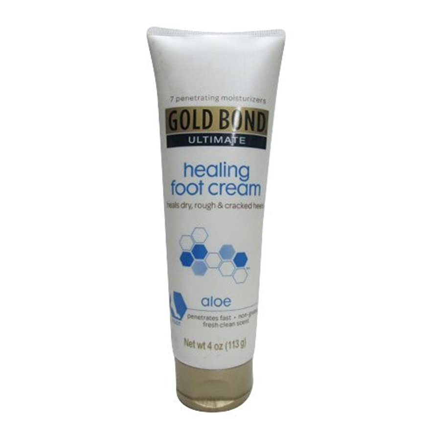 笑い固執資料Gold Bond Healing Foot Therapy Cream 120 ml (並行輸入品)