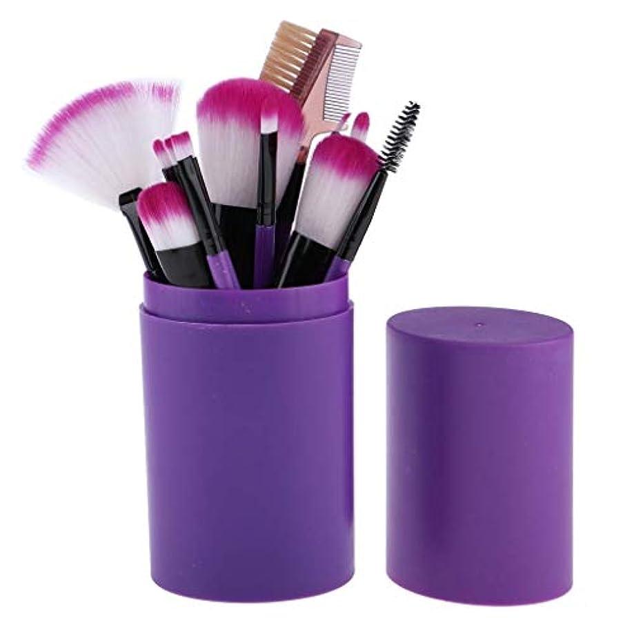ハリウッド持続的チャットCHANGYUXINTAI-HUAZHUANGSHUA メイクブラシセット初心者のための高品質の木製ハンドルのメイクブラシ12個 (Color : Purple)