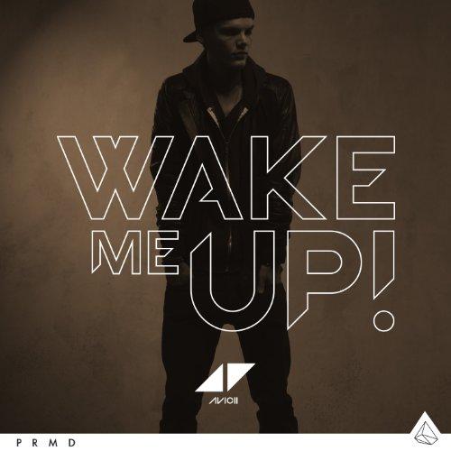 Wake Me Up (2tracks)