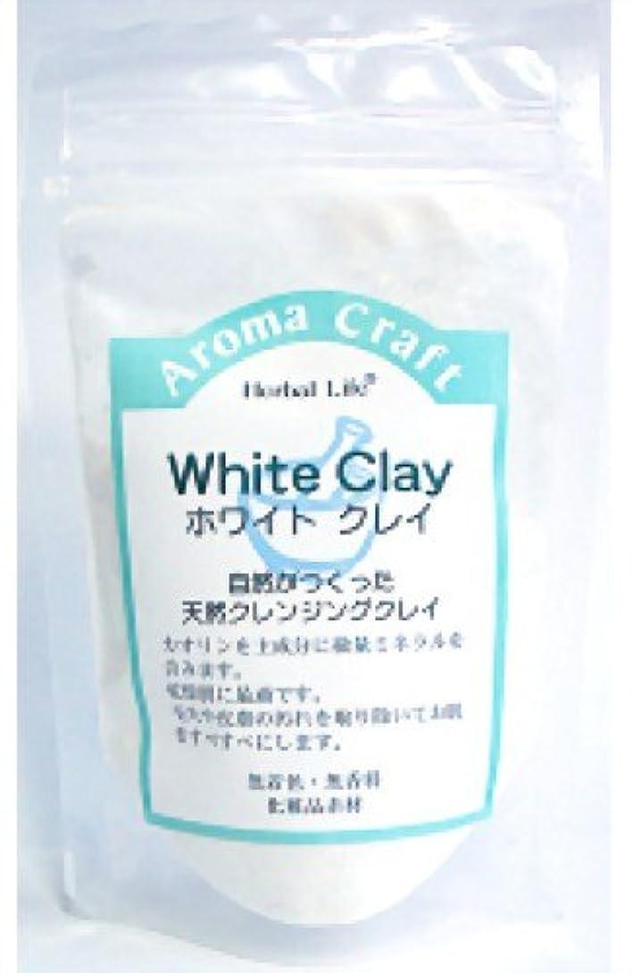 確立自由メリー生活の木 AC ホワイトクレイ 30g