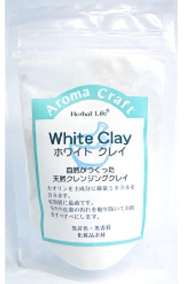 経済的運動リハーサル生活の木 AC ホワイトクレイ 30g