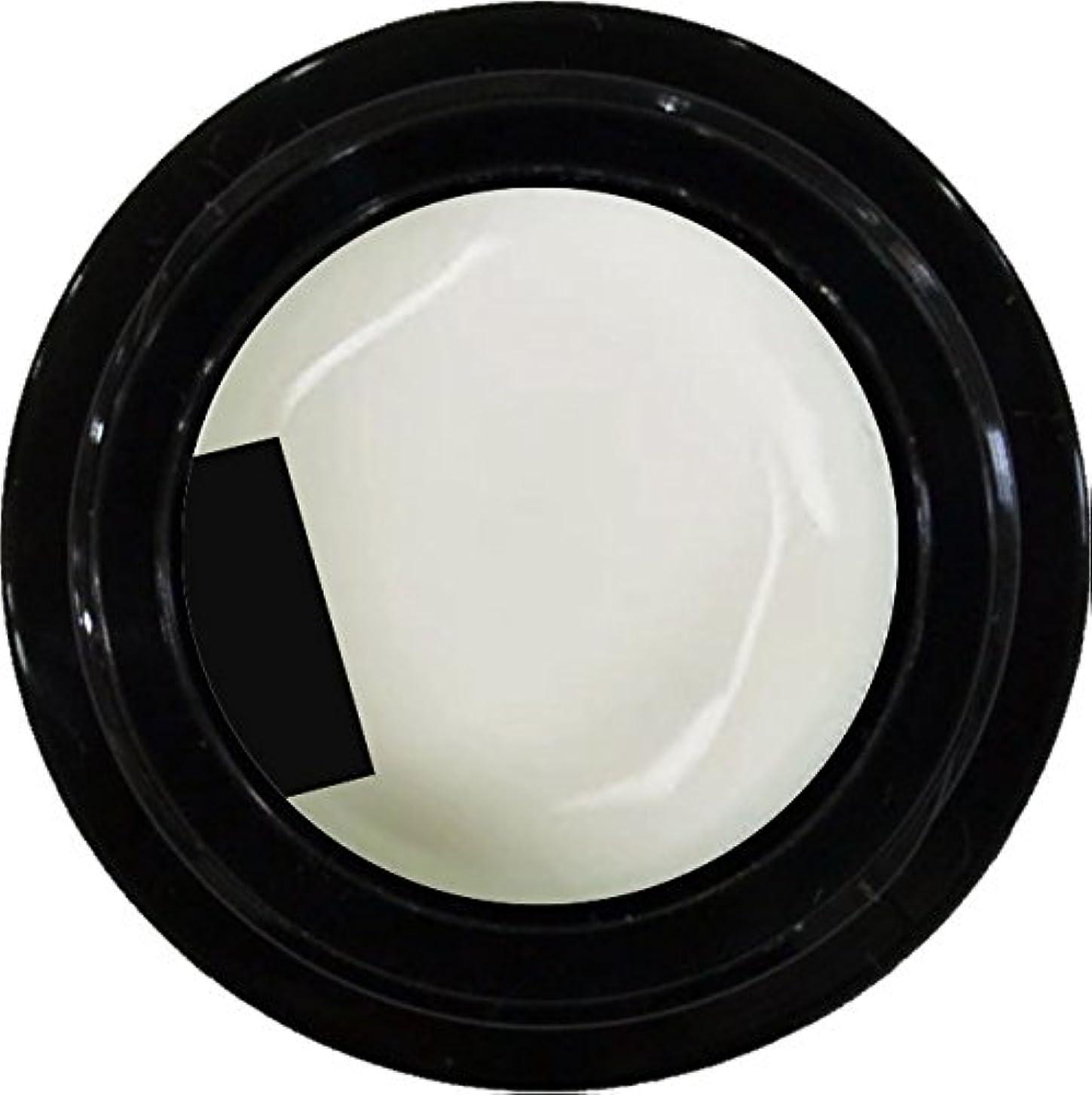 あえぎ死傷者師匠カラージェル enchant color gel M003 FrenchWhite 3g/ マットカラージェル M003 フレンチホワイト 3グラム