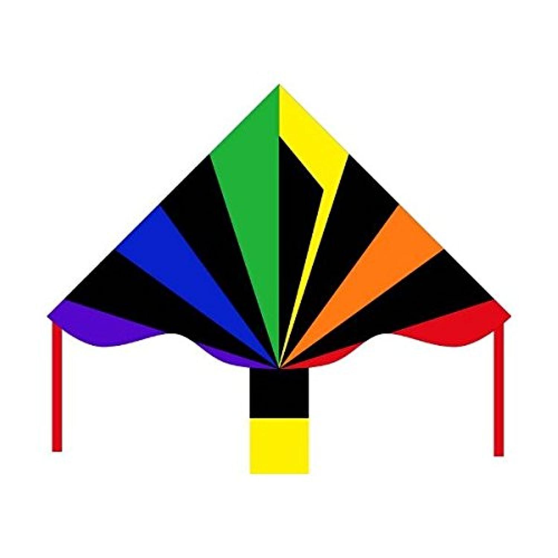 HQ Kites Eco Line: Simple Flyer Black Rainbow 47' Kite おもちゃ [並行輸入品]