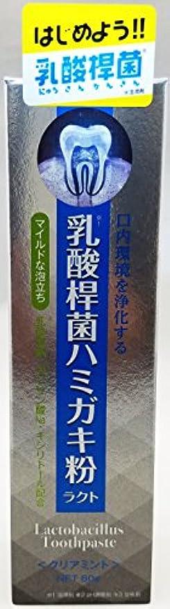 家気体の不確実アイ・プロダクツ 乳酸桿菌ハミガキ粉ラクト 発泡剤あり 80g