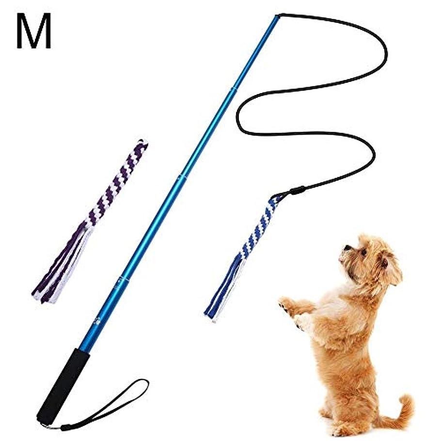 インタラクションスパンすべて犬のホリデーギフト 玩具犬、屋外の相互作用犬のおもちゃ、テレスコ浮気幸福を高めるためにストレスを解放するためのテールからかうとペットのスポーツ犬のおもちゃを追います トラブルと喜びを減らす (Color : Blue, Size : S)