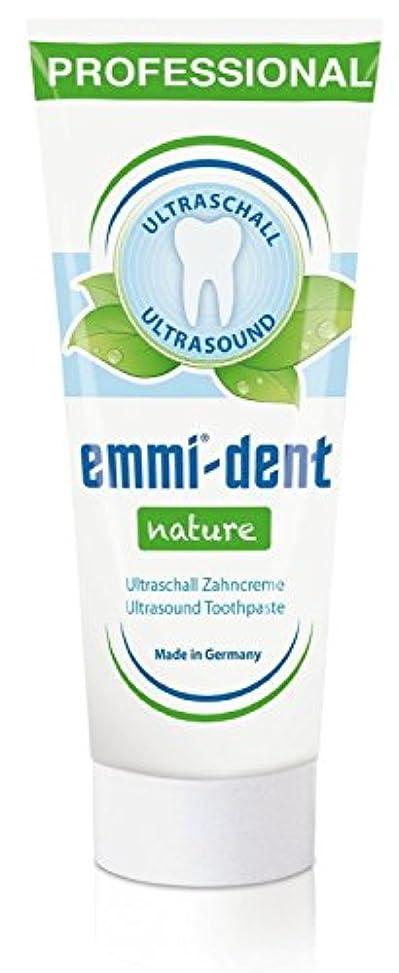 子供達植生覚えているエミデント 超音波歯ブラシ専用歯磨きペースト リフィル 75g