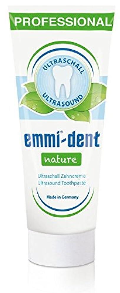 ブラウザ乳剤塗抹エミデント 超音波歯ブラシ専用歯磨きペースト リフィル 75g