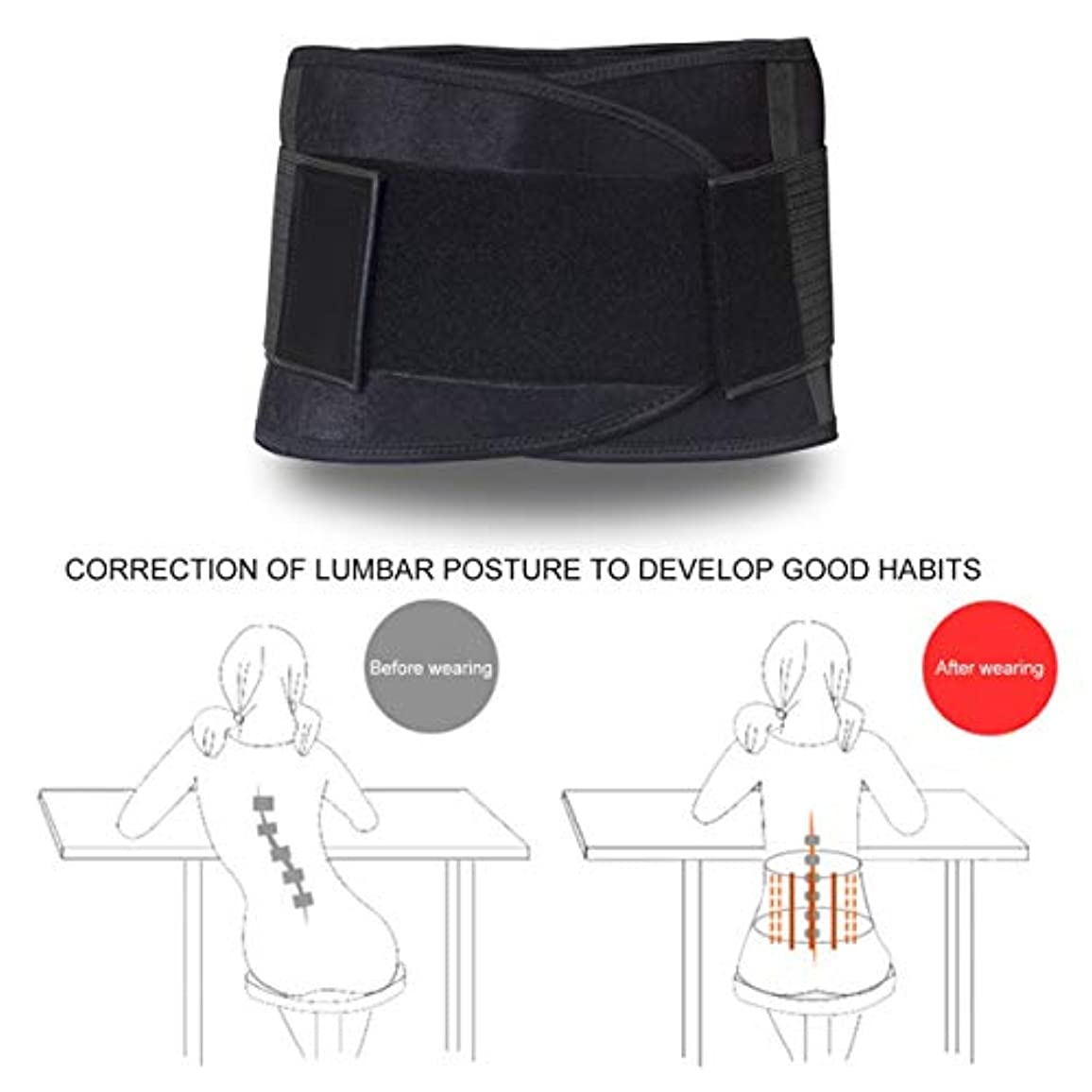 収容するピングローバルB36 Double Pull Lumbar Adjustable Support Lower Back Belt Brace Pain Relief Unisex Sports Protection Waist Trainer...