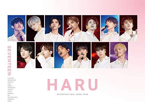 【SEVENTEEN】2019年版メンバー人気ランキングTOP13☆国によって人気なメンバーが違う?の画像