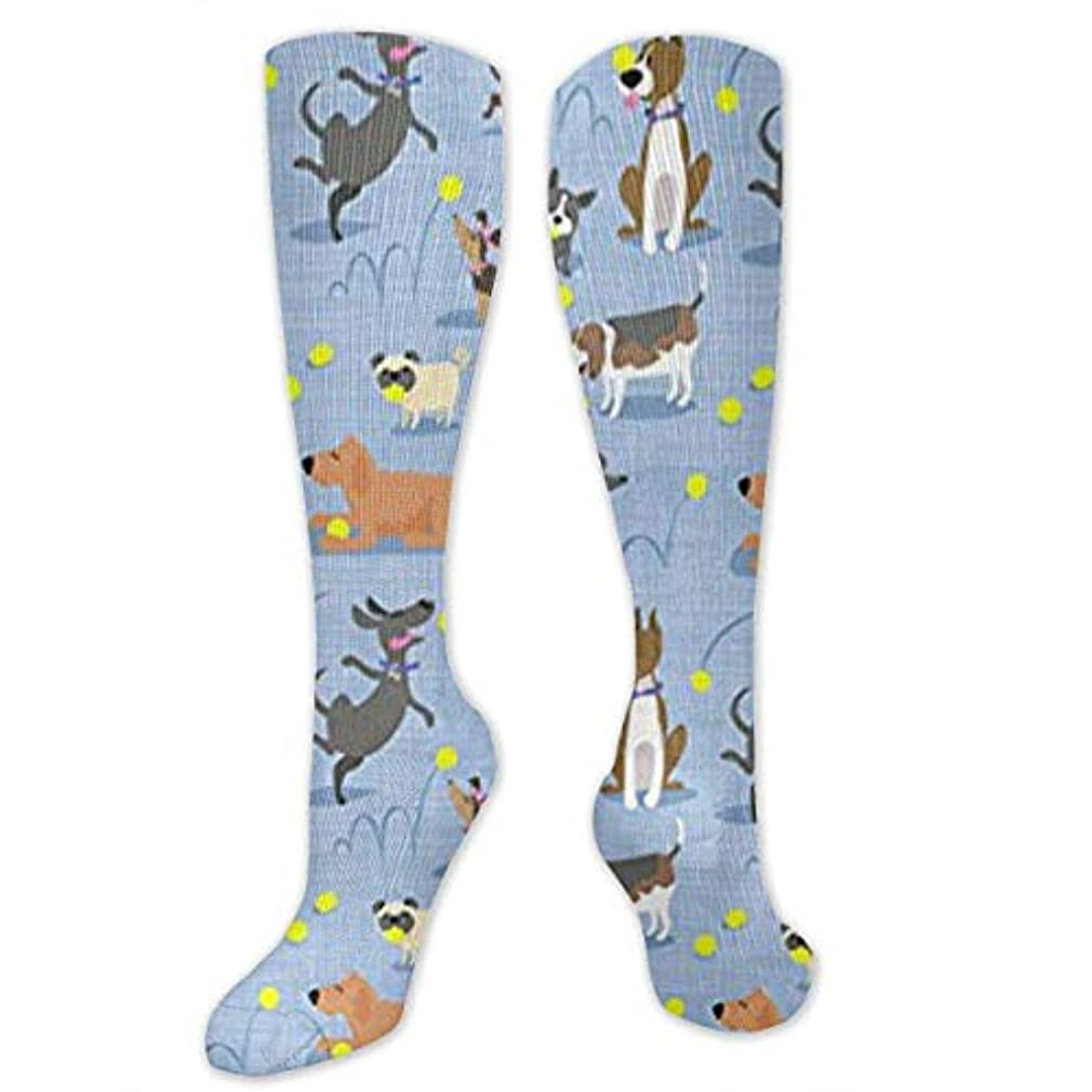 集団ポスター踏み台靴下,ストッキング,野生のジョーカー,実際,秋の本質,冬必須,サマーウェア&RBXAA Tennis Dogs Love Ball Socks Women's Winter Cotton Long Tube Socks...