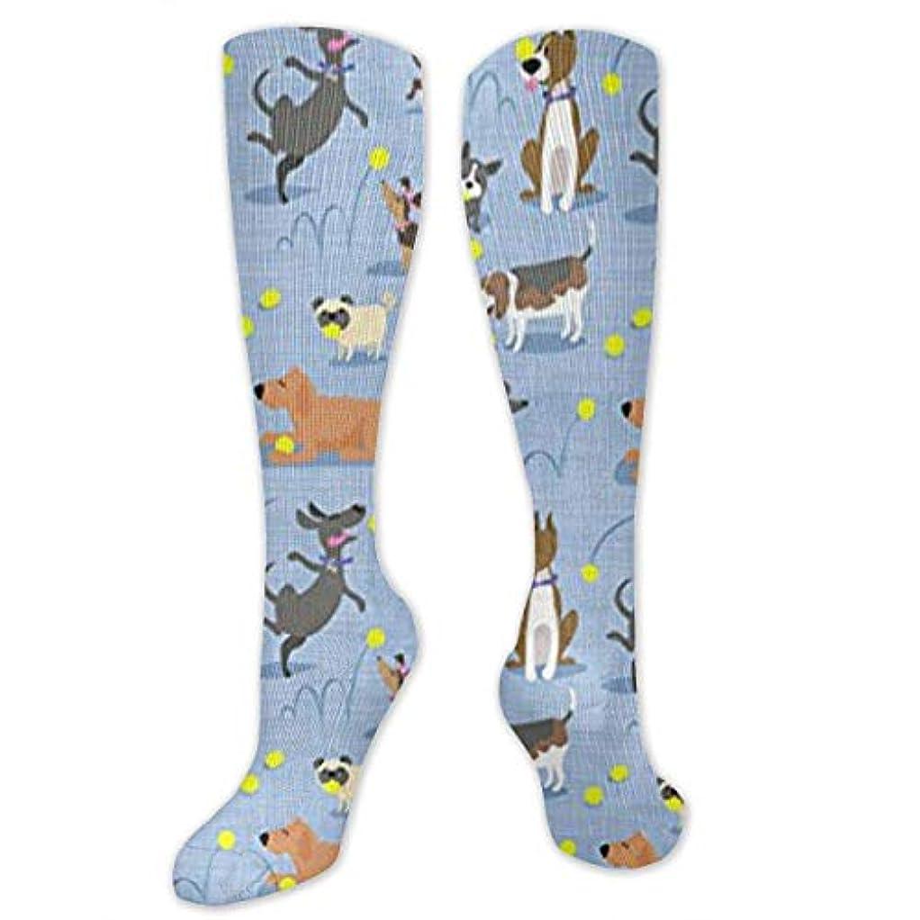 微弱精算オーブン靴下,ストッキング,野生のジョーカー,実際,秋の本質,冬必須,サマーウェア&RBXAA Tennis Dogs Love Ball Socks Women's Winter Cotton Long Tube Socks...